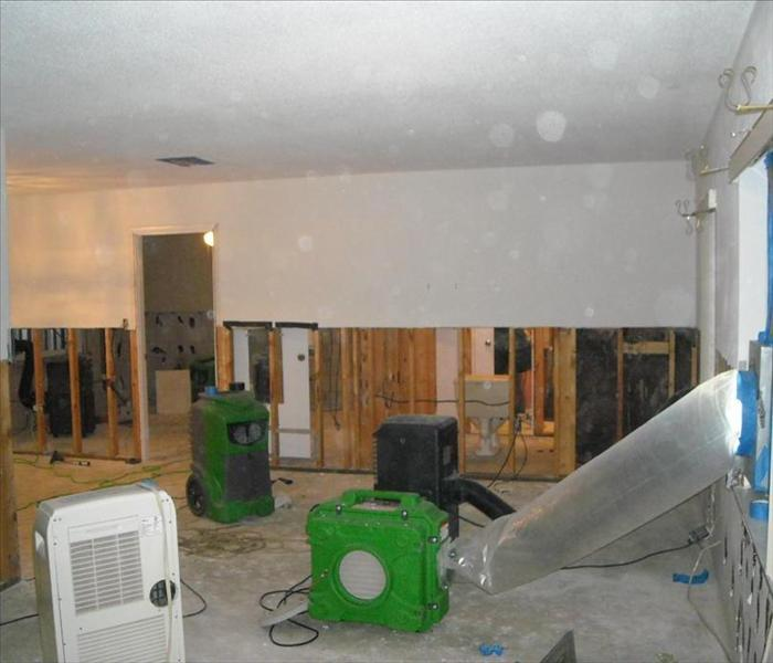 Blountville Black Mold Removal
