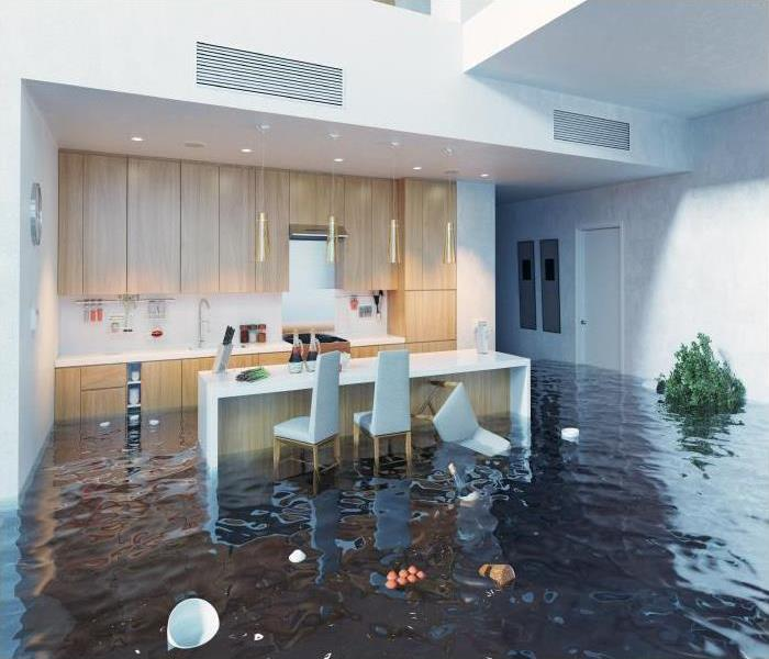 Why SERVPRO How Flood Damage Can Effect Your Bristol Home