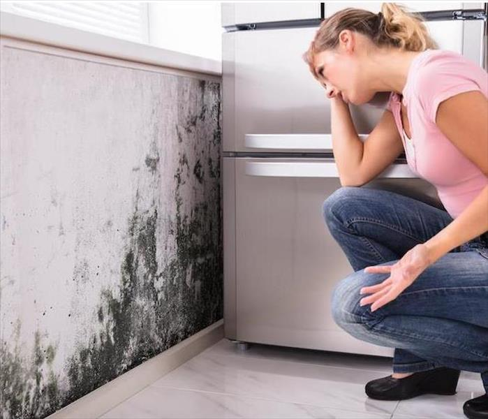 Mold Remediation Kitchen and Bathroom Mold Remediation in Your Colonial Heights Residence