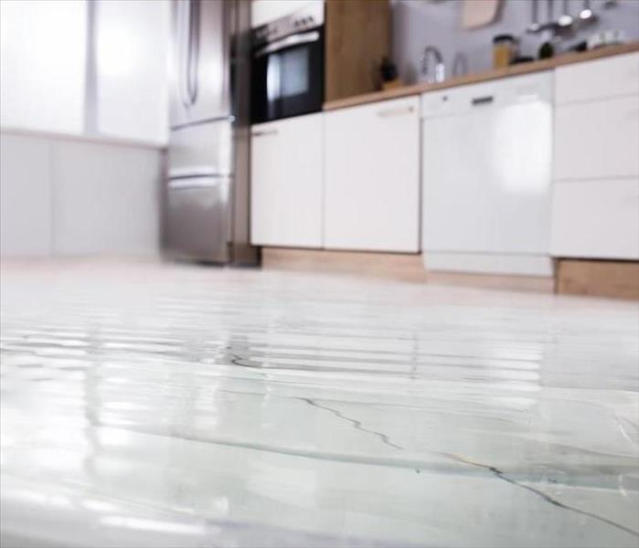 Water Damage What to Do When a Dishwasher Leaks in Your Bristol Home and Causes Water Damage