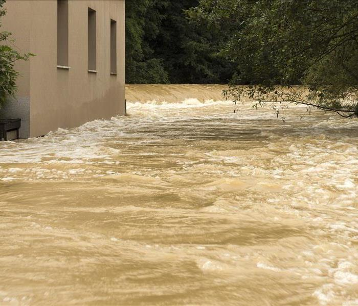 Basement Flooding: Prevention & Action Guide For Kingsport