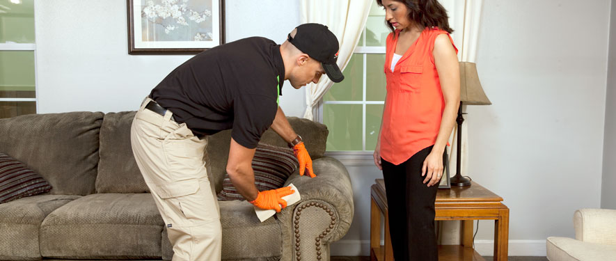 Kingsport, TN carpet upholstery cleaning