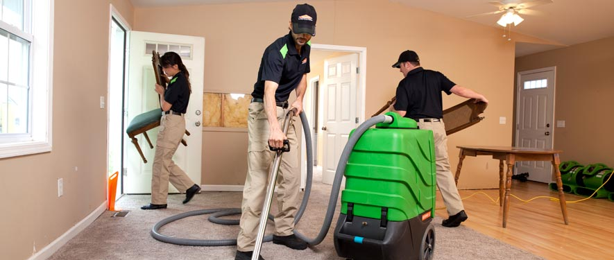 Kingsport, TN cleaning services